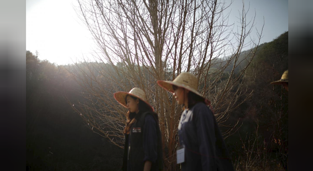 Cuộc sống quá căng thẳng, người trẻ Hàn Quốc sẵn sàng chi 90 USD để được... vào tù ở 1 ngày - Ảnh 21.
