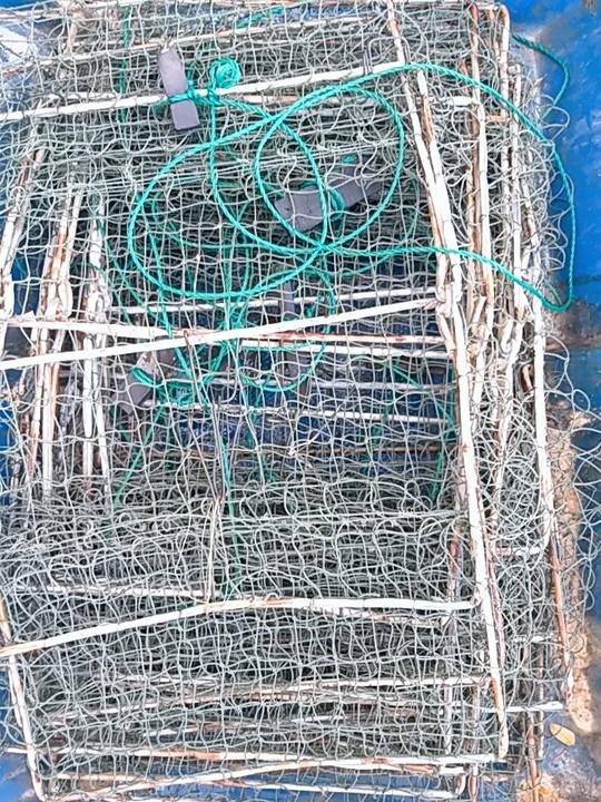 Không cần thị trường Trung Quốc, giá cua biển trong nước vẫn nhảy múa - Ảnh 1.