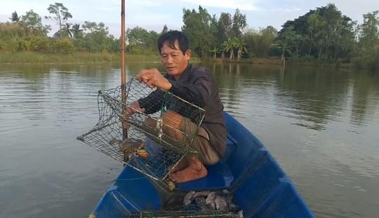 Không cần thị trường Trung Quốc, giá cua biển trong nước vẫn nhảy múa - Ảnh 2.