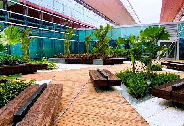 Choáng ngợp nhà ga xanh như khách sạn 5 sao ở Sân bay Vân Đồn - Ảnh 2.