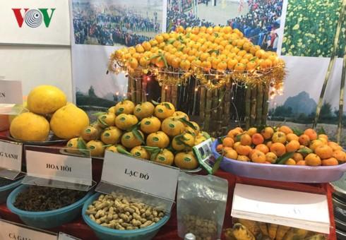 Quýt vàng Bắc Sơn - đặc sản có giá trị kinh tế cho nông dân Lạng Sơn - Ảnh 1.