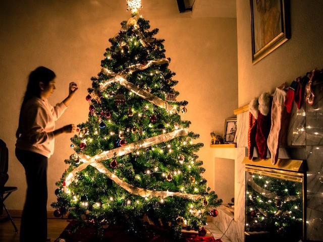 10 nguồn gốc thú vị của những tục lệ truyền thống trong lễ Giáng sinh: Hôn nhau dưới cây tầm gửi, treo tất cạnh lò sưởi, giấu dưa chuột muối trong cây thông… - Ảnh 2.