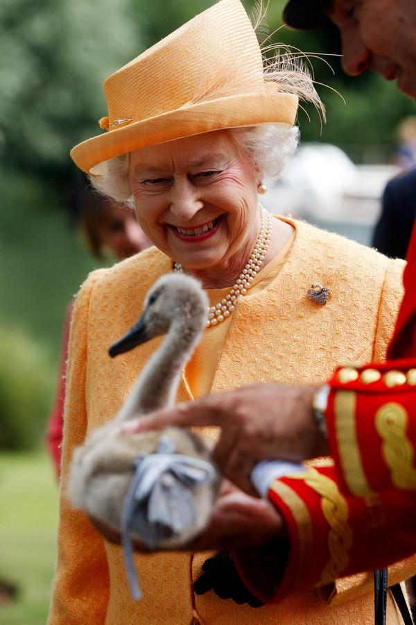 Hai hình ảnh đối lập nhưng dung hoà trong Nữ hoàng Anh: Một người phụ nữ quyền lực và một người bà dịu dàng, bao dung - Ảnh 3.