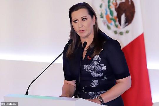 Rơi máy bay, nữ thống đốc của gia đình quyền lực bậc nhất Mexico thiệt mạng - Ảnh 1.