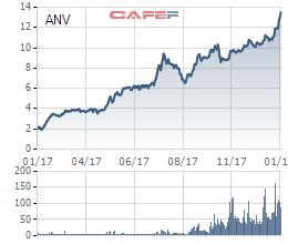 Dứt điểm xong khoản đầu tư vào DAP 2, Navico báo lãi lớn trong quý IV - Ảnh 1.