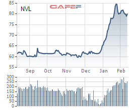 Novaland lấy ý kiến cổ đông về việc niêm yết ở nước ngoài, phát hành riêng lẻ 100 triệu cổ phiếu và 300 triệu Trái phiếu chuyển đổi - Ảnh 1.