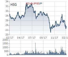 Hoa Sen Group một năm nhìn lại: Chủ tịch nhấn mạnh đang ở đỉnh cao nội lực, cổ phiếu định giá thấp nhưng… chỉ toàn người nhà giao dịch - Ảnh 1.