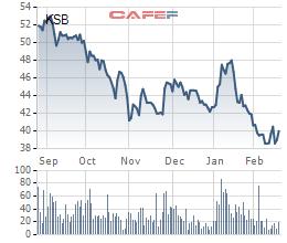 KSB giảm mạnh, Dream House tranh thủ đăng ký mua thêm 2,7 triệu cổ phiếu - Ảnh 1.