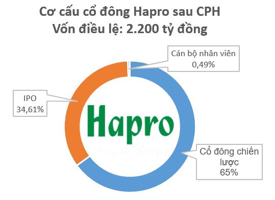 """Cổ đông chiến lược toan tính thâu tóm Hapro, lộ diện quỹ """"đất vàng"""" trung tâm Hà Nội - Ảnh 1."""