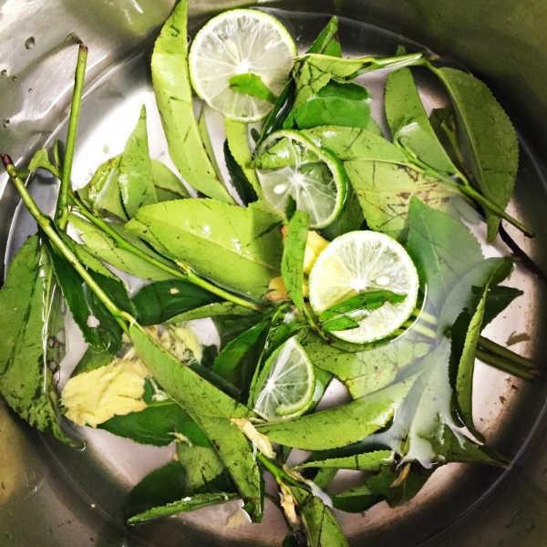 Dắt túi ngay những bài thuốc chữa bệnh từ lá chanh nếu bạn bị cảm sốt, ho do lạnh - Ảnh 4.