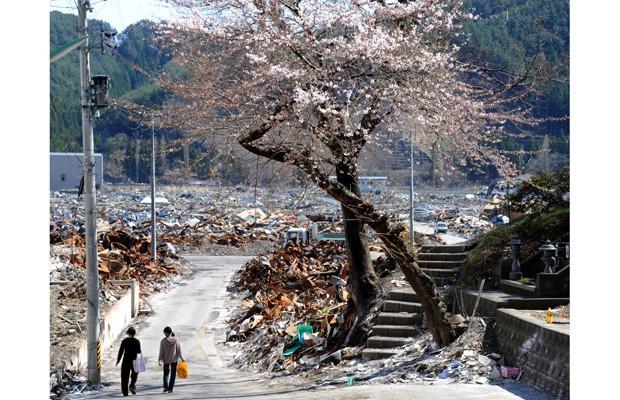 7 năm sau thảm họa sóng thần tàn phá Nhật Bản: Từ trận động đất kinh hoàng đến sự hồi phục kì diệu - Ảnh 9.