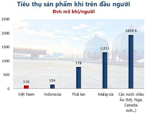 """Petro Miền Trung (PMG) : """"Ông trùm"""" gas duyên hải Nam Trung Bộ hướng đến giấc mơ thương hiệu bán lẻ như BigC, Metro… - Ảnh 3."""