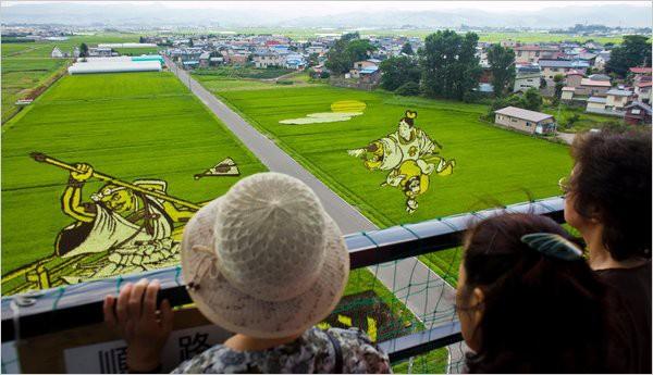 Làng thần kỳ Nhật Bản: Từ nghèo nhất đến nổi tiếng khắp cả nước, doanh số bán gạo tăng 400% nhờ biến ruộng lúa thành tranh - Ảnh 1.