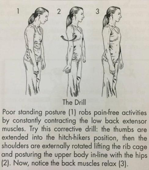 Hướng dẫn đứng và ngồi đúng cách, giúp dân văn phòng giảm nguy cơ đau mỏi cột sống - Ảnh 7.