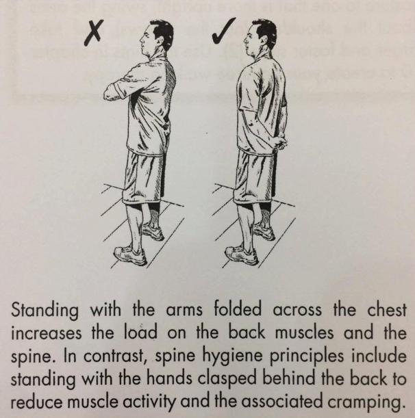 Hướng dẫn đứng và ngồi đúng cách, giúp dân văn phòng giảm nguy cơ đau mỏi cột sống - Ảnh 8.
