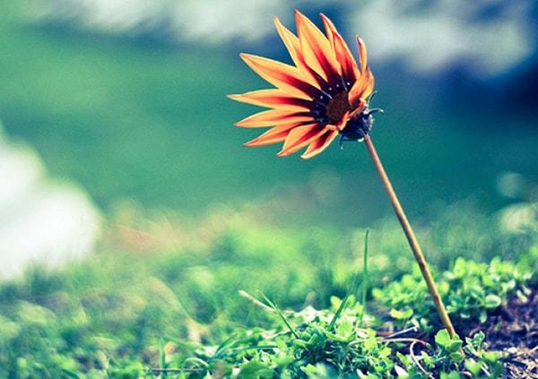 """Không dễ để nhận ra 6 sự thật giấu kín này nhưng một khi đã biết cuộc sống của bạn sẽ """"dễ thở"""" hơn nhiều - Ảnh 3."""