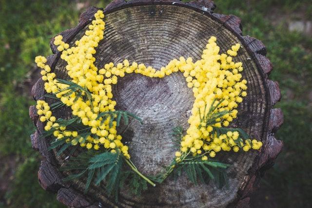 Tại sao đàn ông nên tặng hoa cho người yêu thương của mình trong ngày 8/3? Câu chuyện bắt nguồn từ một ý nghĩa tuyệt vời - Ảnh 1.