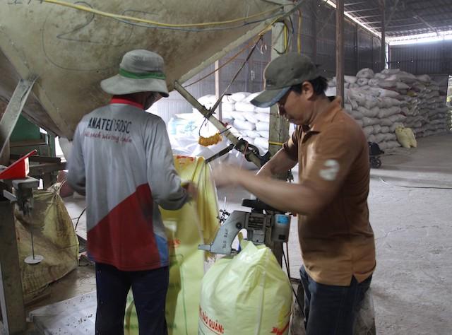 Doanh nghiệp làm giả nhãn hiệu lúa giống bán cho nông dân  - Ảnh 2.