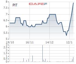 Bất chấp KQKD thua lỗ, cổ phiếu PIT vẫn có chuỗi 5 phiên tăng trần liên tiếp - Ảnh 1.