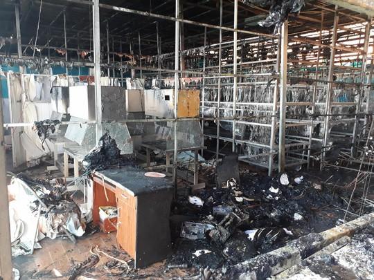 Cháy lớn tại Công ty Sâm Ngọc Linh Đà Lạt - Ảnh 1.