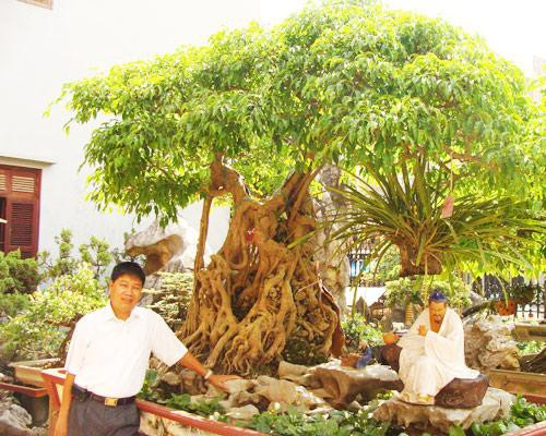 Hai thú chơi không còn xa lạ nhưng vẫn ngốn tiền tỷ của doanh nhân Việt - Ảnh 5.