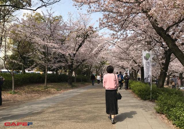 Du khách sắp phải trả 1.000 yên thuế chia tay khi rời Nhật Bản - Ảnh 1.
