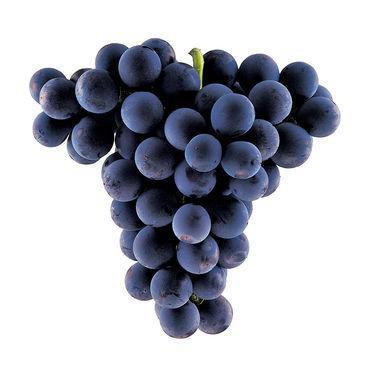 7 loại rau quả mùa hè phòng chống ung thư - Ảnh 5.
