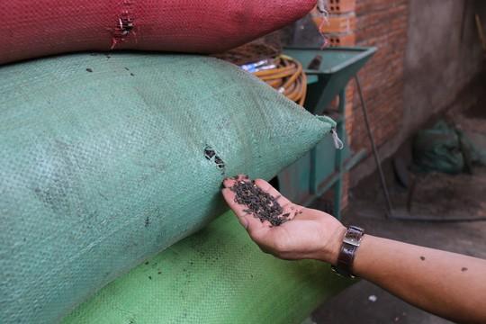 Cận cảnh chế biến cà phê độc hại từ tạp chất và than pin - Ảnh 9.