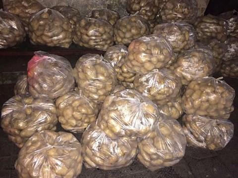 Không cần giải cứu khoai tây, dùng cách đơn giản này lãi lớn - Ảnh 1.