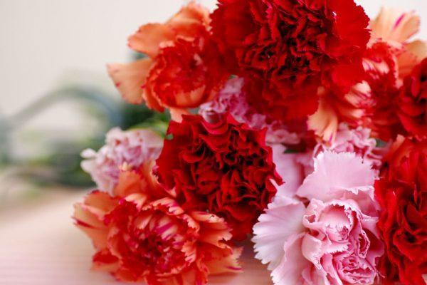 Trên thế giới, người ta kỉ niệm Ngày của mẹ như thế nào? - Ảnh 1.