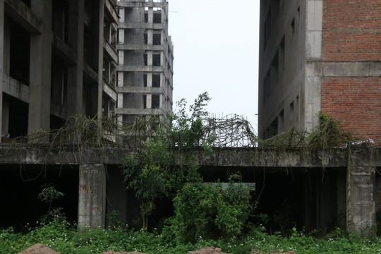Cận cảnh hoang tàn dự án bệnh viện 700 giường đầu tư 850 tỉ đồng - Ảnh 6.