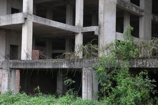 Cận cảnh hoang tàn dự án bệnh viện 700 giường đầu tư 850 tỉ đồng - Ảnh 8.
