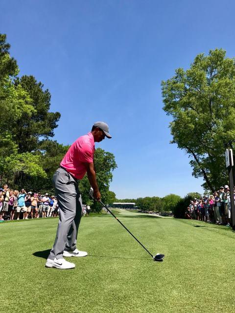 Khán giả vây kín sân Quail Hollow xem Tiger Woods đánh tập - Ảnh 1.