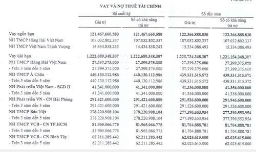 Vietcombank có dễ bán được khoản nợ của chúa chổm vận tải biển Vintranschart? - Ảnh 2.