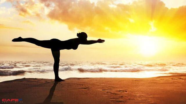 7 lợi ích khi tập Yoga trong căn phòng nhiệt gần 40 độ C - Ảnh 4.