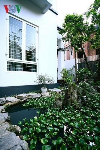 Kinh nghiệm thiết kế sân vườn đẹp - Ảnh 2.