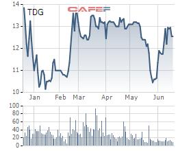 Hàng loạt lãnh đạo Dầu khí Thái Dương đang liên tục mua – bán cổ phiếu TDG - Ảnh 1.