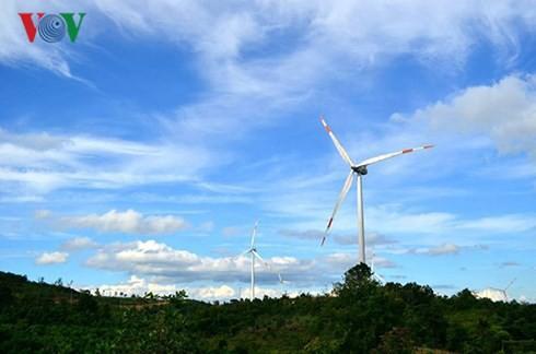 Điện gió Việt Nam chưa hấp dẫn nhà đầu tư - Ảnh 1.