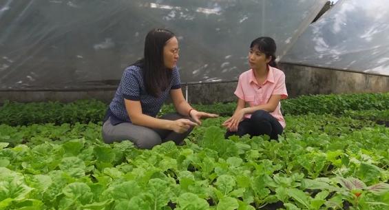 """[BizSTORY] Nguyễn Thị Quỳnh Viên và hành trình gây dựng thương hiệu rau xanh """"6 không"""" - Ảnh 2."""