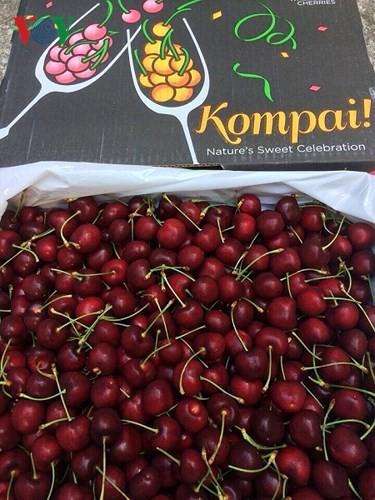 Trái cây ngoại siêu đắt tại Việt Nam là cây dại ở nước ngoài? - Ảnh 14.