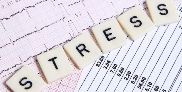 Làm thế nào để không chết chìm trong stress? - Ảnh 1.