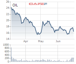 PV Oil tạm dừng việc chọn lựa nhà đầu tư chiến lược - Ảnh 1.