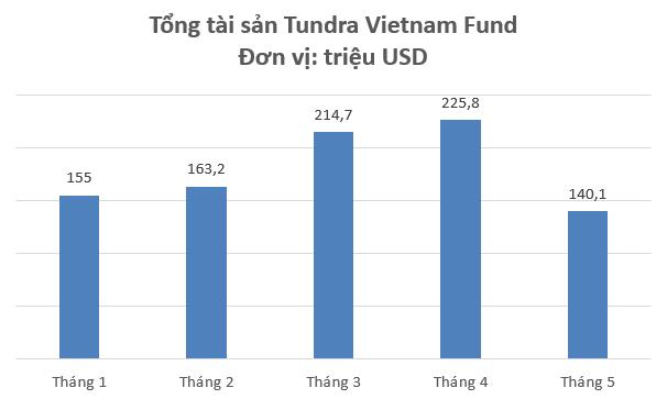 """Chứng khoán Việt Nam giảm sâu, tổng tài sản Tundra Vietnam Fund """"bay hơi"""" 38% chỉ sau 1 tháng - Ảnh 1."""