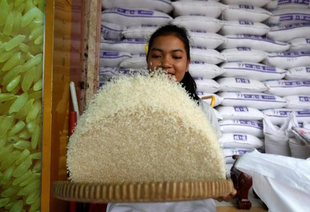 Điều gì khiến Campuchia từ quốc gia đói nghèo, sau 10 năm có gạo xuất khẩu tới 63 thị trường, thu nhập người nông dân tăng 100% chỉ nhờ trồng lúa? - Ảnh 2.