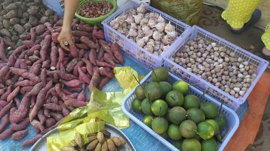 Tỏi cô đơn Việt giá cao gấp 10 lần hàng Trung Quốc, Myanmar - Ảnh 6.
