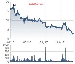 Thủy sản Hùng Vương (HVG) báo lỗ 272 tỷ đồng ngay trong quý 2/2018 - Ảnh 3.