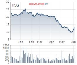 Hoa Sen Group (HSG) trần được 3 phiên, Tundra vội vã muốn rút vốn - Ảnh 1.