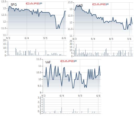 Cổ phiếu phân bón đồng loạt tăng tốc từ giá đáy, chuyện gì đang diễn ra? - Ảnh 2.