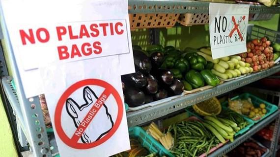 Cả Châu Á đang chung tay chống lại túi nylon, rác thải nhựa như thế nào? - Ảnh 3.
