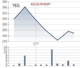 Nhà đầu tư ngoại đã sở hữu tối đa 49% cổ phần của Yeah1 Group - Ảnh 1.